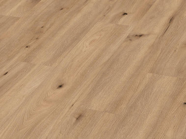 LD250 Light field oak 6843